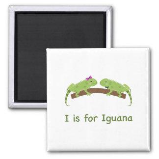I is for iguana refrigerator magnets