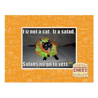 I iz not a cat. Iz a salad. Postcard
