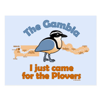 I Just Came for the Plovers Postcard
