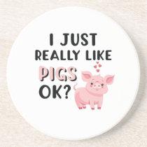 I Just Really Like Pigs OK? Coaster