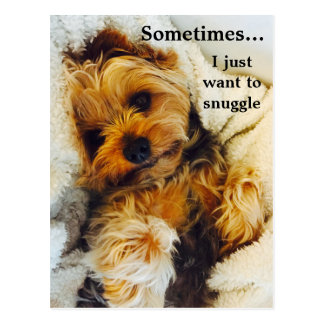 I Just Want to Snuggle Yorkie Postcard