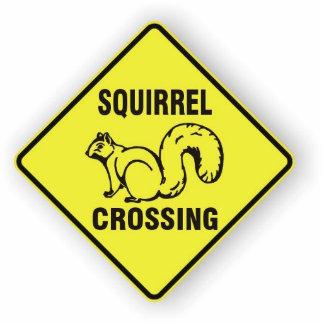 I kicked a squirrel sculpture