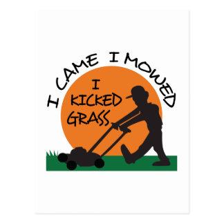 I KICKED GRASS POSTCARD