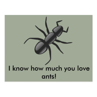 I know how much you love ants! postcard