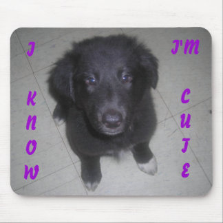 I KNOW I'M CUTE PUPPY MOUSE PAD