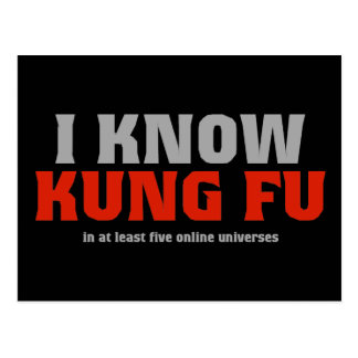 I Know Kung Fu - In At Least Five Online Universes Postcard
