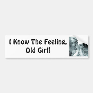 I Know The Feeling, Old Girl! Car Bumper Sticker
