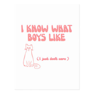 I know what boys like... I just don't care Postcard
