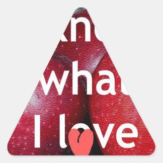I know what I love Triangle Sticker
