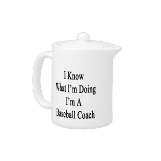 I Know What I'm Doing I'm A Baseball Coach