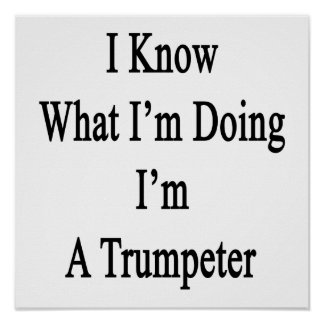 I Know What I'm Doing I'm A Trumpeter Poster
