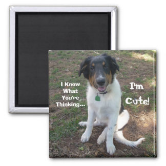 I Know What You're Thinking..., I'm Cute! Magnet