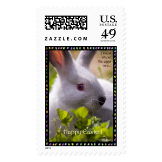 I know where the eggs are... postage stamp