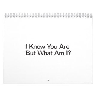 I Know You Are But What Am I Wall Calendars