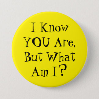 I know you are, but what am I? Pinback Button
