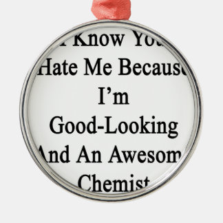 I Know You Hate Me Because I'm Good Looking And An Metal Ornament