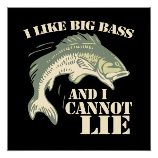 I like big bass and I cannot lie Poster