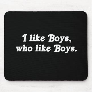 I like boys who like boys Pickup Line Mousepad