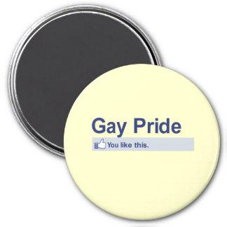 I Like Gay Pride Fridge Magnets