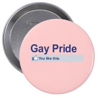 I Like Gay Pride Pinback Button
