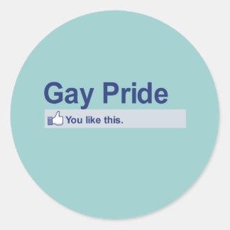 I Like Gay Pride Round Stickers