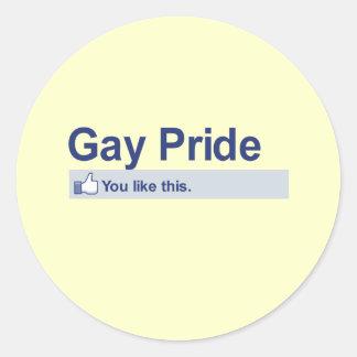 I Like Gay Pride Stickers