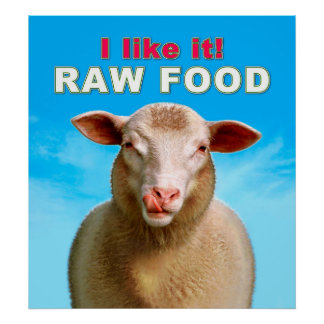 I like it! RAW FOOD Poster