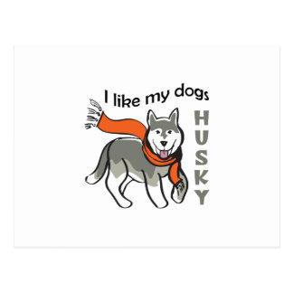 I Like My Dogs Postcard