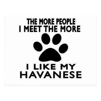 I like my Havanese. Postcard