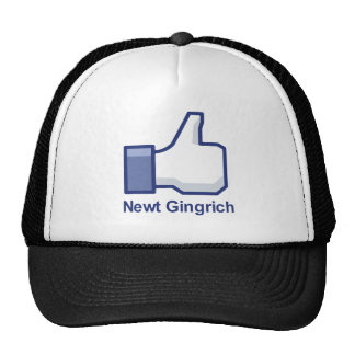 I LIKE NEWT GINGRICH TRUCKER HAT