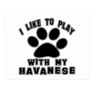 I like to play with my Havanese. Postcard