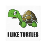 I Like Turtles Canvas Print