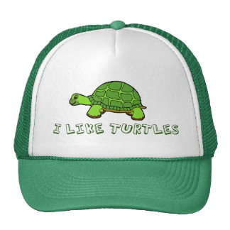 I Like Turtles Mesh Hats