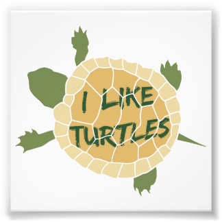 I Like Turtles Photo Print