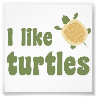 I Like Turtles Photographic Print