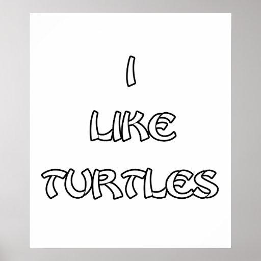 I like Turtles Poster