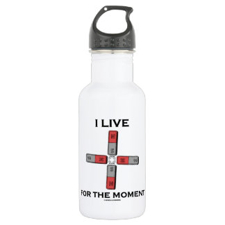 I Live For The Moment (Magnetic Quadrupole Moment) Stainless Steel Water Bottle