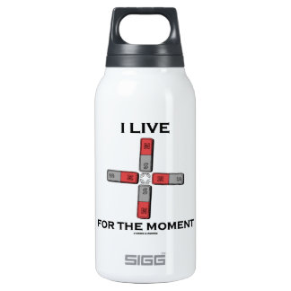 I Live For The Moment (Magnetic Quadrupole Moment) Thermos Bottle