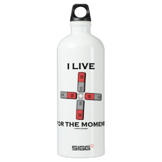 I Live For The Moment (Magnetic Quadrupole Moment) Water Bottle
