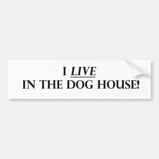 I Live in the Dog House Bumper Sticker