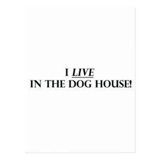 I Live in the Dog House Postcard