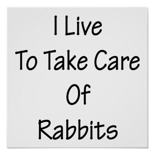 I Live To Take Care Of Rabbits Posters