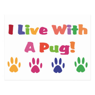 I Live With A Pug Postcard