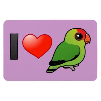I Love Abyssinian Lovebirds Magnet