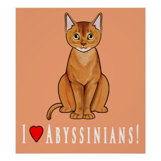 I Love Abyssinians! Poster