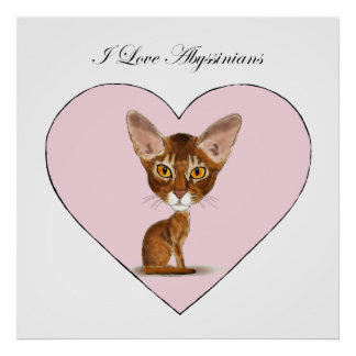 I Love Abyssinians Posters