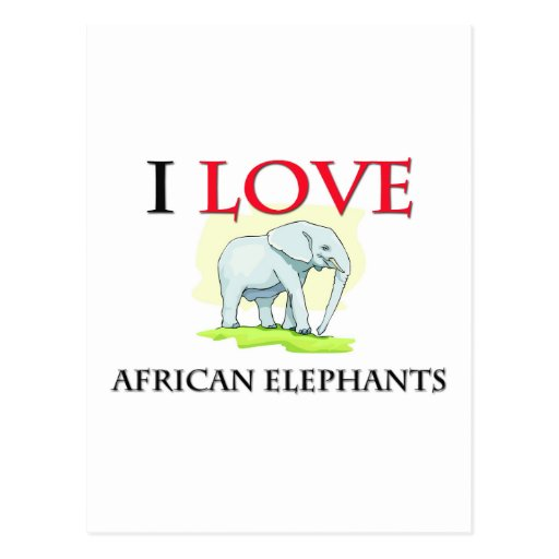 I Love African Elephants Post Cards
