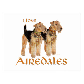 I Love Airedales Post Card