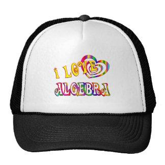I Love Algebra Hats