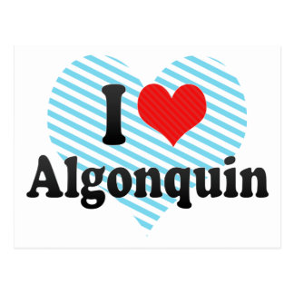 I Love Algonquin Post Cards